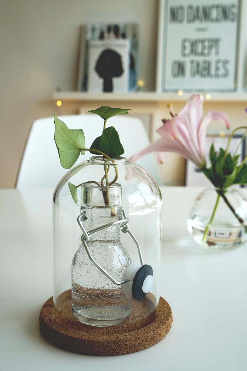 Ett enkelt sätt att piffa till hemmet är att sätta en stickling i en  söt vas av mindre format.
